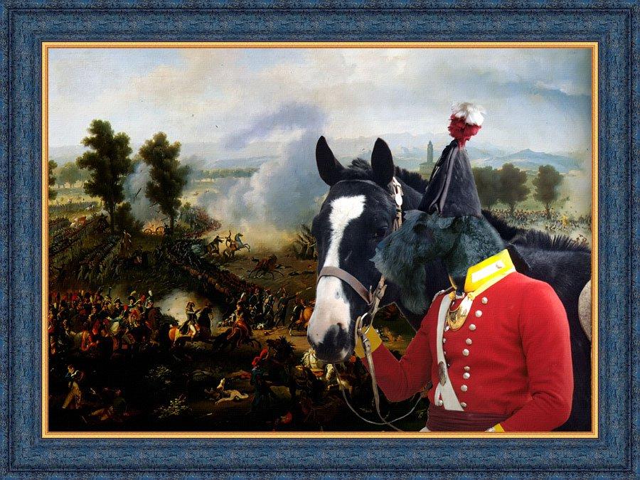 Kerry Blue Terrier Fine Art Canvas Print -  Bataille de Marengo