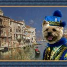 Norwich Terrier Fine Art Canvas Print - The Grand Canal, Venice