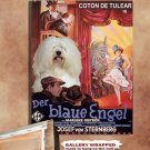 Coton de Tulear Poster Canvas Print -  The Blue Angel