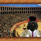 Portuguese Sheepdog Fine Art Canvas Print - The matador