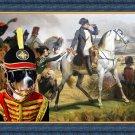 Grosser Schweizer Sennenhund Fine Art Canvas Print - Napoleon viewed battleground