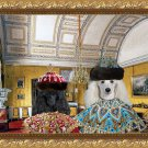 Poodle Fine Art Canvas Print - Emperor and Empress in Yellow Salon
