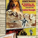 Collie Rough Poster Canvas Print  -  North by Northwest Movie Poster