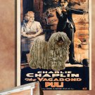 Puli Poster Canvas Print  -  The Vagabond Movie Poster