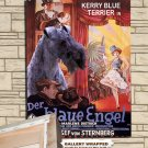 Kerry Blue Terrier Poster Canvas Print  -  The Blue Angel Movie Poster