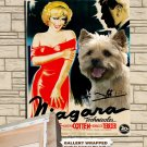 Norwich Terrier Poster Canvas Print  -  NIAGARA Movie Poster