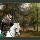 Ibizan Hound Wirehaired Fine Art Canvas Print - Hunter in the forest