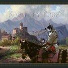 Swedish Elkhound Fine Art Canvas Print - View at Town