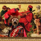Australian Silky Terrier Fine Art Canvas Print - The happy boys