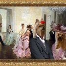 Yorkshire Terrier Fine Art Canvas Print - Too Early