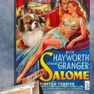 Tibetan Spaniel Poster Canvas Print  -  Salome Movie Poster