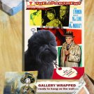Affenpinscher Poster Canvas Print  -  The Apartment Movie Poster