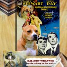 American Staffordshire Terrier Poster Canvas Print - The Man Who Knew Too Much Movie Poster