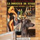Italian Greyhound Vintage Poster Canvas Print - La Dolce Vita Movie Poster