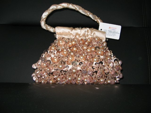 Beaded Embroidery purse