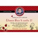 Printable Ladybug Birthday Party Photo Invitations Girl 1st 2nd Lady Bug Polka Dot