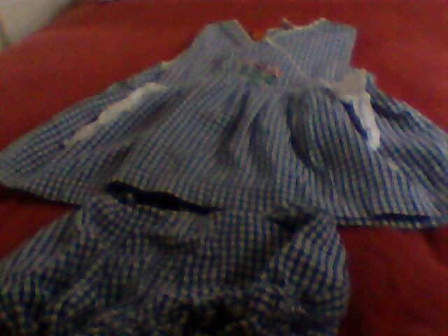 2pc. girls dress and underpants my pal flowers blue,white checkered cute 3T