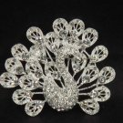 Bridal crystal Peacock Rhinestone Brooch pin PI114