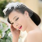 Bridal Rhinestone Feather Birdcage Fascinator net prom Hair clip HR253
