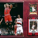 Derrick Rose Chicago Bulls Photo Plaque.