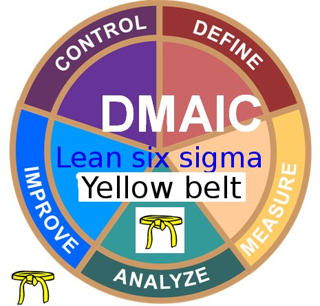 Operational Excellence at Pfizer - Lean Six Sigma Yellow Belt  training + YB Case Studies e-books