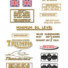 1963-66: Thunderbird - DECAL SET - Triumph 6T Stickers (Adhesive Transfers)