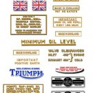 T100 A T100SS TR5A: 1960-65 - DECAL SET- Triumph Tiger
