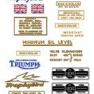 1956 - 60: TR6 - DECAL SET - Triumph Trophybird
