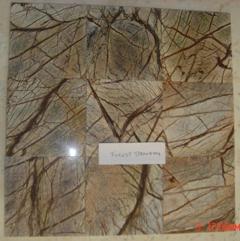 Marble Tile 12x12 Rain Forest Brown Polished