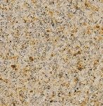 Granite Tile 24x24 Giallo Fantasia Polished