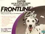 Frontline Plus Dog     6 pk.      45 - 88 lbs.