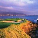 New Chairman C.O.B. Silver Golf Cart Bag for Clubs 2011
