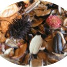 HOLIDAY CREME BRULEE POTPOURRI - FREE SHIPPING