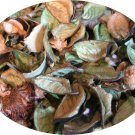 CREME BRULEE SCENTED POTPOURRI - FREE SHIPPING
