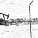 Truxton Ave. Oil Pump
