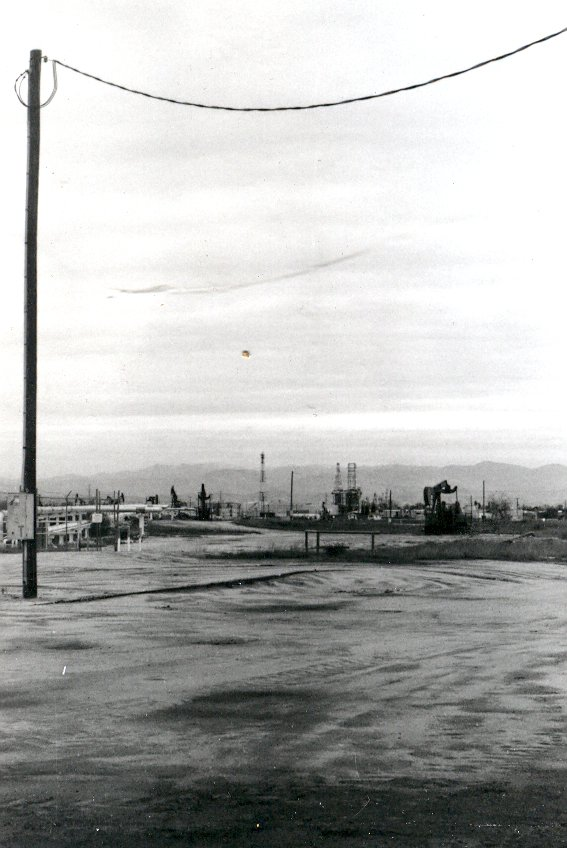 Rosedale Oil Pump (2)