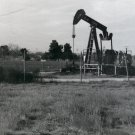 Rosedale Oil Pump (3)