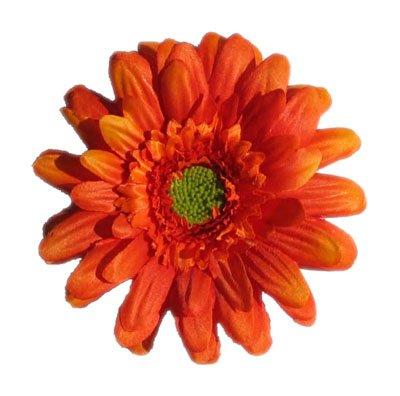 Orange Gerbera Daisy Clip