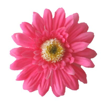 Pink Gerbera Daisy Clip
