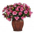Azalea w/Vase Silk Plant