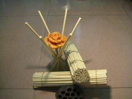 "Aromatherapy Diffuser(5.0 X 10""/100Reed Diffuser Refill Sticks)"
