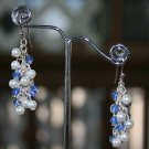 Blue and White Dangle Earrings