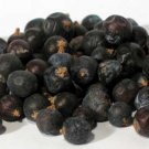 Juniper Berries whole 1oz 1618 gold - H16JUNW