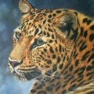 LEOPARD 2 New DAVID STRIBBLING Ltd Ed Wildlife Print.