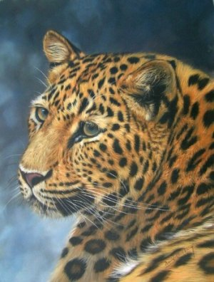 LEOPARD 2 New DAVID STRIBBLING Ltd Ed Wildlife Print.