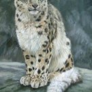 SNOW LEOPARD New DAVID STRIBBLING Ltd Ed Wildlife Print.