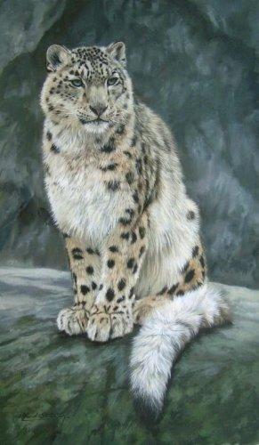 SNOW LEOPARD New DAVID STRIBBLING Ltd Ed Wildlife Print.