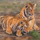 TIGER CUBS New! DAVID STRIBBLING Ltd Ed Print.