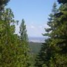 California Pines Vacant Lot with Utilities, Views, and Good Roads