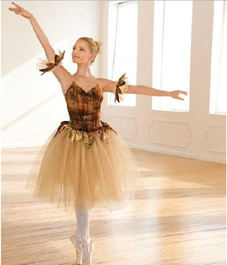 Girl BALLET TUTU DANCE DRESS PARTY DRESS style41
